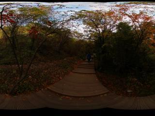 九寨沟诺日朗的秋日风情