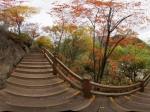 九寨沟盆景滩附近的栈道红叶全景