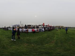 2011唐人马球公开赛全景
