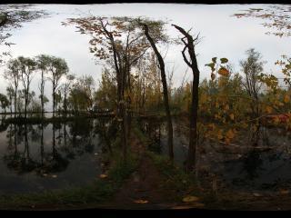 湿地公园秋叶全景——四川凉山州西昌市邛海湿地公园