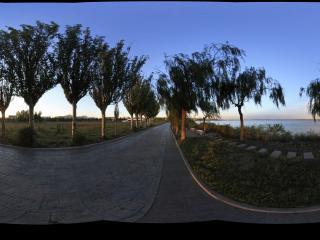 南海湿地景区内寂寞的园路