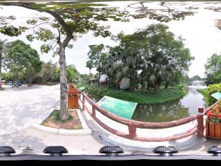 深圳野生动物园湖中岛