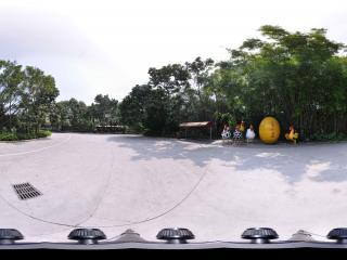 深圳野生动物园卡通鸡