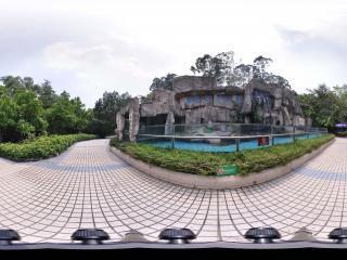 深圳野生动物园企鹅馆
