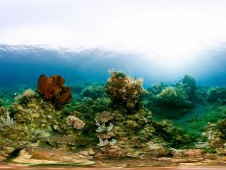 澳大利亚 大堡礁全景