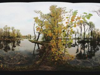 西昌湿地公园水彩画