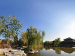 北京植物园 秋景NO.23