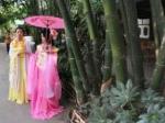 成都公园偶遇古装美女全景