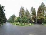 上海市植物园全景