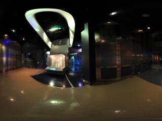 DNA螺旋大模型全景