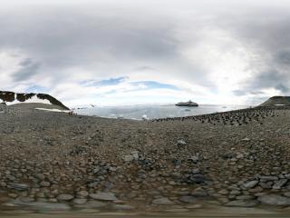 南极企鹅虚拟旅游