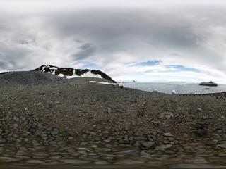 南极 企鹅一