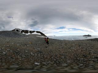 南极 成群的企鹅