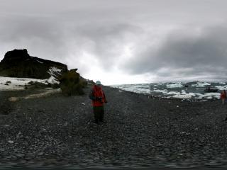 南极 大家都在拍企鹅