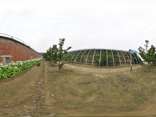 北京 温室公园 NO.46