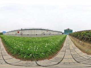 北京 温室公园 NO.44