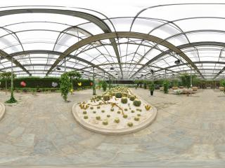 北京 温室公园 NO.41