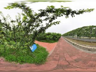 北京 温室公园 NO.39