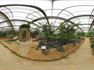 北京 温室公园 NO.4