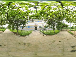 北京 温室公园 NO.1
