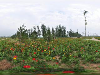北京万花园