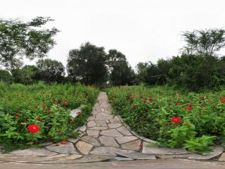 北京国家森林公园 NO.30