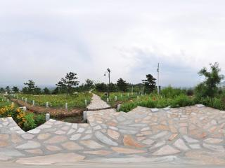 北宫国家森林公园 NO.5