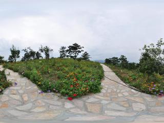 北宫国家森林公园 NO.2