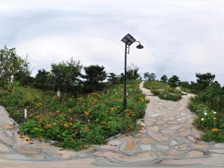 北京国家森林公园 NO.21