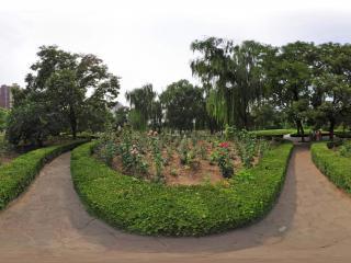 北京市昌平公园 NO.8