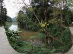 青城山 下月城湖边全景