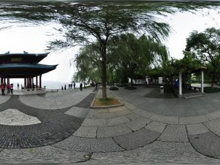 杭州西湖柳岸闻莺