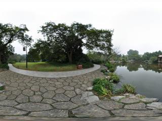 杭州西湖渔港观鱼