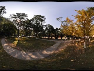 桂林 七星公园 园景