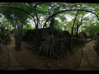 贵州省黄果树风景区七星桥景点