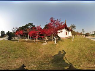 岳阳 君山公园 NO.55