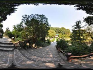 岳阳 君山公园 NO.28