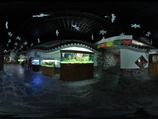 长沙海底世界 NO.11全景