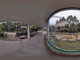 南宁动物园 NO.12