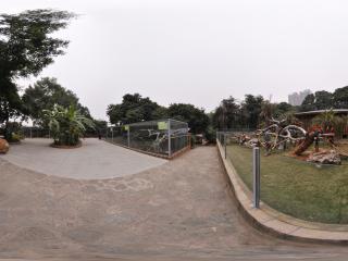 南宁动物园 NO.7