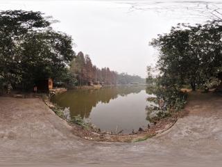 南宁良凤江森林公园 NO.7