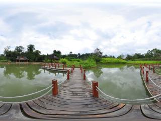 中科院植物园虚拟旅游
