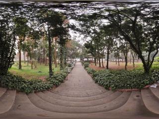 良凤江森林公园虚拟旅游