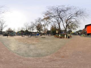 常州红梅公园 NO.5