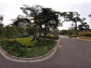 柳州龙潭公园 NO.12