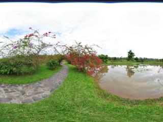 西双版纳热带植物园虚拟旅游