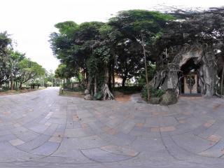 深圳海上田园树屋