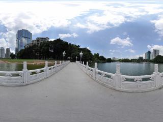 深圳荔枝公园大桥