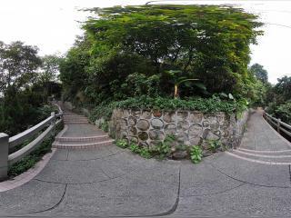 广州白云山三岔路