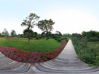 广州二沙岛街心花园